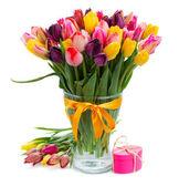 Tulipanes multicolores frescos en florero — Foto de Stock
