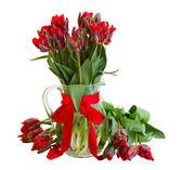 Весна красный тюльпан цветы в вазе — Стоковое фото
