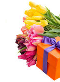 Gift box with colorful tulips — Stok fotoğraf