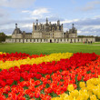 Stock Photo: Chambord castle, Loire valley,F rance