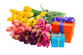 Colorful tulips and gift boxes — Stok fotoğraf