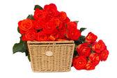 Pile of fresh orange roses with basket — Stock Photo