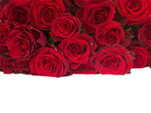 Border of fresh red roses pile — Foto de Stock