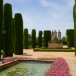 Gardens at Alcazar in Cordoba, Spain — Stock Photo #40219037