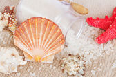 Sea spa setting with scallops comb shell — Stock Photo