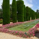 Gardens at the Alcazar in Cordoba, Spain — Stock Photo #40220925