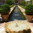 Generalife gardens, Granada, — Stock Photo