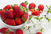 Pile of strawberries with spring twigs — Stock Photo