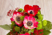 Bouquet of red anemone flowers close up — Stock fotografie