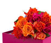 Hromadu oranžových a růžových růží — Stock fotografie