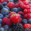 Bluberry, raspberry, blackberry and red currrant — Stock Photo #40460451
