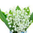 Stock Photo: Lilly of valley blooming posy