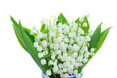 Lilly of the valley blooming posy — Stock fotografie