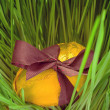 Stock Photo: Golden egg in grass