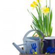 Gardening tools with daffodils — Stock Photo #41021291