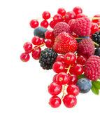 Pilha de frutas frescas — Fotografia Stock