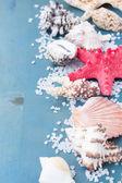 Border os sea salt and shells — Stock Photo