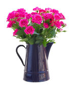 Bouquet of blossoming pink roses in vase — Stock Photo