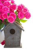 Pink roses with bird cage — Stock Photo