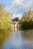 Minnewater pond , Brugge — Zdjęcie stockowe