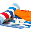 Beach striped towel and sandals — Stok fotoğraf