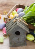 Birdcage with colorful easter eggs — Stock Photo