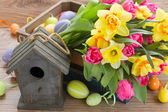 Birdcage with tulips and daffodils — Stock Photo