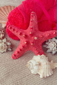 Red starfish with towels — ストック写真