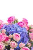 Posy of pink roses and blue hortensia flowers close up — Stock Photo