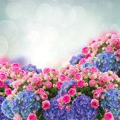 Mazzo di rose e fiori di hortensia — Foto Stock