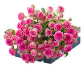 Heap of fresh pink roses — Stock Photo