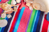 Sea shells on beach towel — Stockfoto