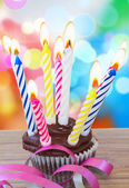 One birthday cupcake with candles — Stock Photo