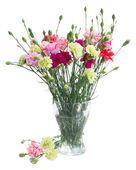 Bukett av nejlikor blommor i vas — Stockfoto