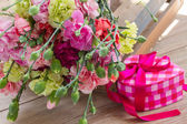 Carnation bloemen — Stockfoto