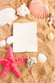 Starfish ans seashells frame on sand — Stock Photo