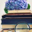 Pile of old books with flowers and looking glass — Stock Photo #47090571