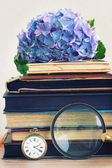 Pile of old books with flowers and looking glass — Stock Photo