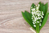 Lilly of the valley posy — Stock Photo
