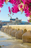 Old cathedral and roman bridge, Cordoba — ストック写真