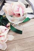 Magnolia flowers — Стоковое фото