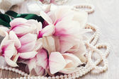 Magnolia flowers with pearls — ストック写真