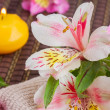 Spa setting with alstroemeria flowers — Stock Photo #48037163