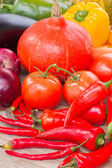 Ripe of fresh vegetables — Stock Photo