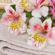 Spa setting with alstroemeria flowers — Stock Photo #48371885