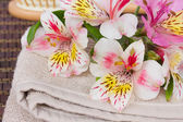 Spa setting with alstroemeria flowers — Stock Photo