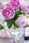 розовые пионы — Стоковое фото