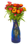 Bouquet of Everlasting flowers — Stock Photo