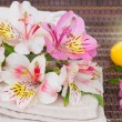 Spa setting with alstroemeria flowers — Stock Photo #48534853