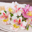 Spa setting with alstroemeria flowers — Stock Photo #49001041